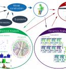 New Publication – Dopamine Receptors and Intracellular Partners